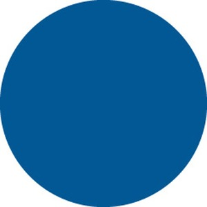 30661 INVENTORY LABEL-1-1/2IN BLUE