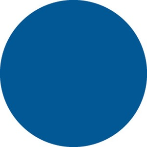 30665 INVENTORY LABEL-3IN BLUE