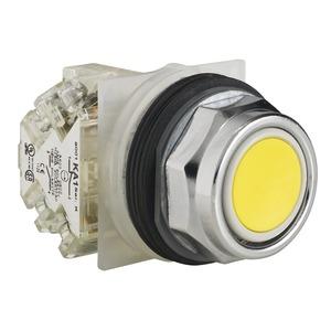 9001KR1YH13 P-BTN 600VAC 10A30MM T-K