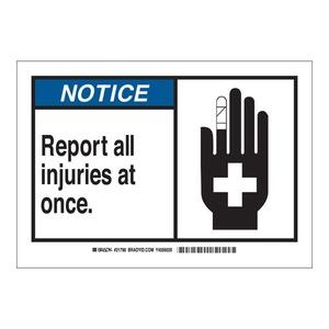 21798 B401 7X10 ANSI BLK,BLU/WHT REPORT,