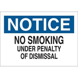 25091 NO SMOKING SIGN